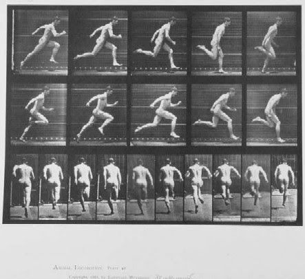 File:Muybridge runner.jpg