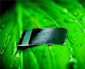 Segredos da primeira folha artificial prática