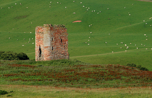 File:Corsbie Tower - geograph.org.uk - 1422694.jpg