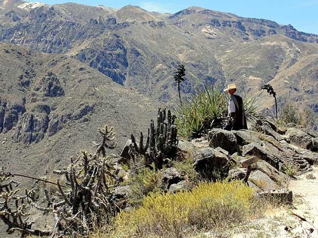Vale do Colca, no Peru  (Foto: Divulgação/TerradaGente )