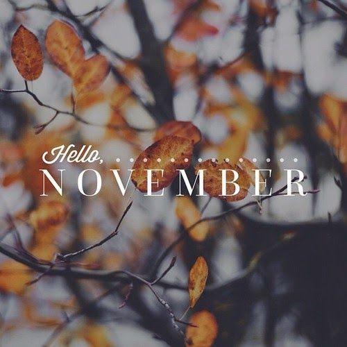 Image result for hello november
