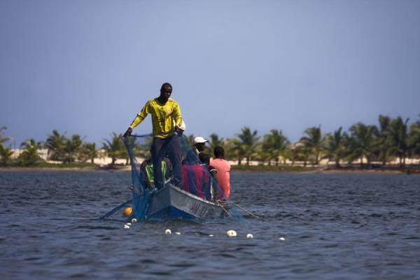 Photograph of Fishermen putting nets in the Volta river - Ghana - Africa