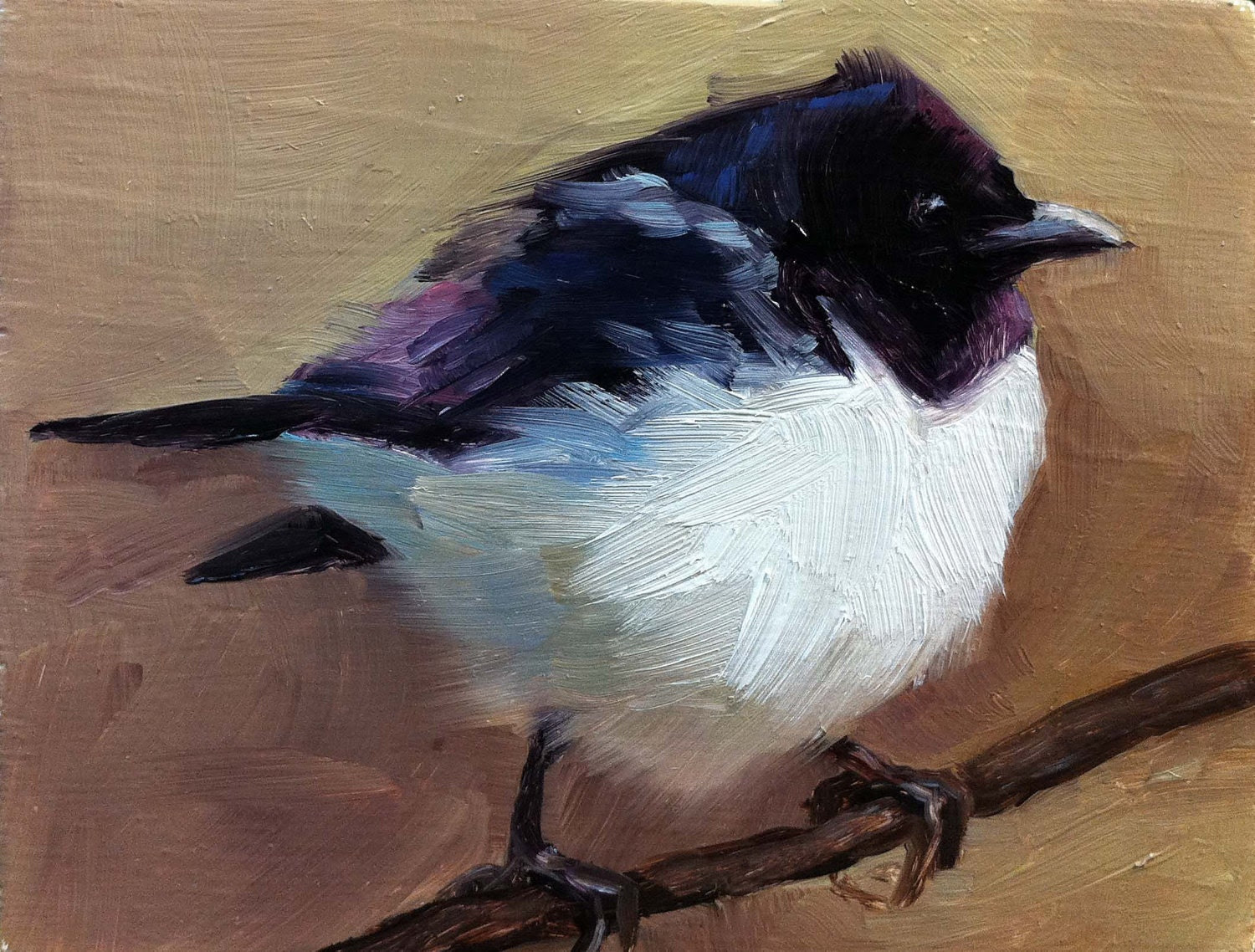 Violet-backed Starling - Bird Painting - Open Edition Print - FinchArts