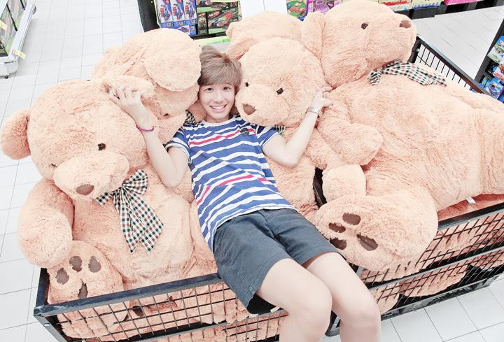 typicalben teddy bear