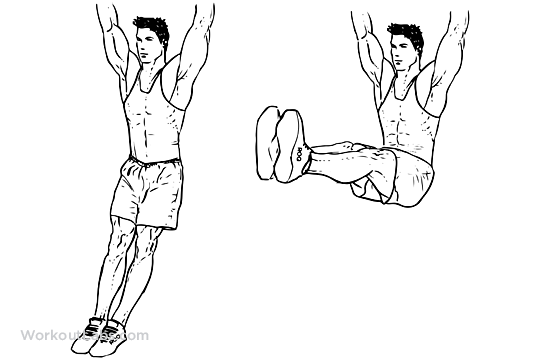 Image result for Hanging Leg raises