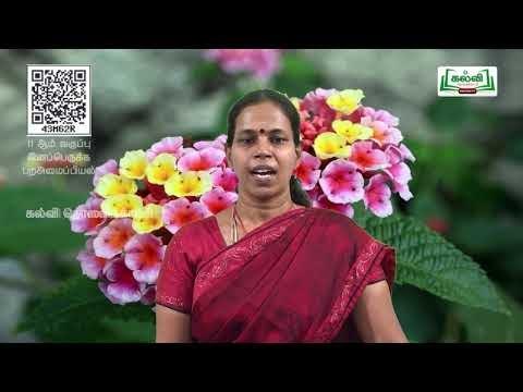11th Botany இனப்பெருக்க புற அமைப்பியல் கனிகள் அலகு 4 பகுதி 2 Kalvi TV