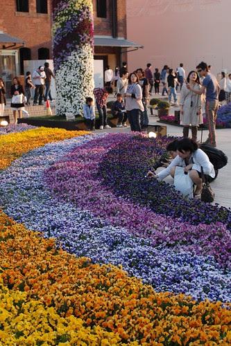 Flower festival in Yokohama