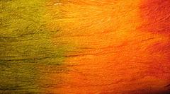 painted warps3 Nov 08