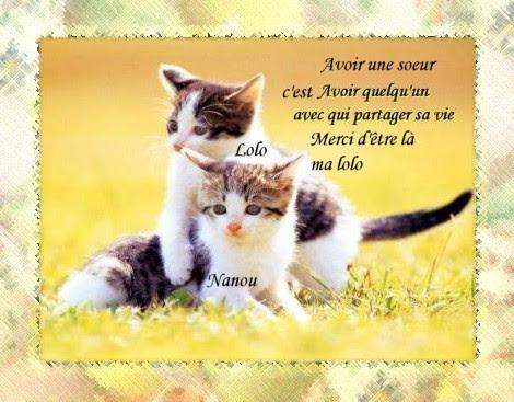 Citation Amour Belle Soeur