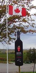 niagara wine pics 018