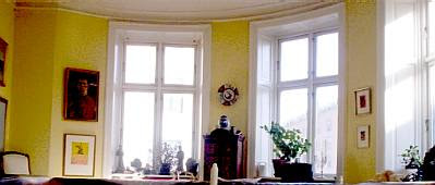 Steen's salon