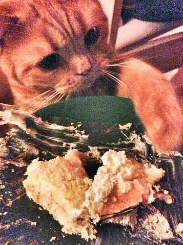 the little cake thief