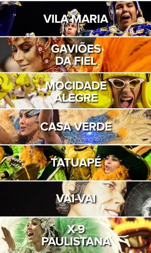 Todas as escolas - Segundo dia carnaval de São Paulo no Anhembi (Foto: G1)