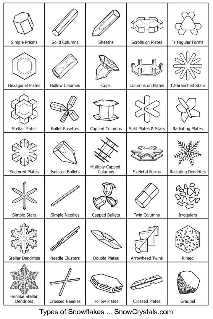 Snowflake Types