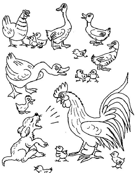 malvorlagen tiere bauernhof  kostenlose malvorlagen ideen