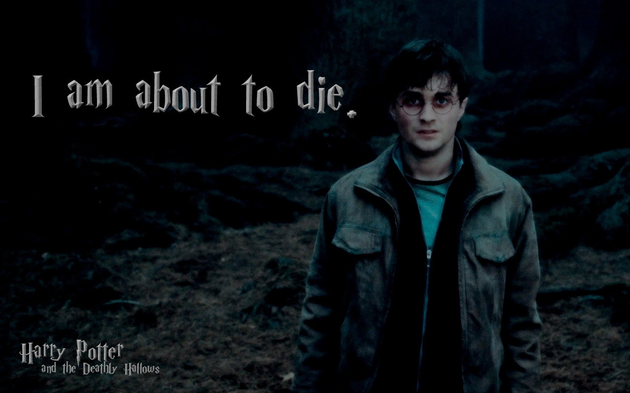 Harry In Deathly Hallows Harry Potter Wallpaper 13426657 Fanpop