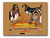 Basset Hound  Tarlang Bass Kennel FCI