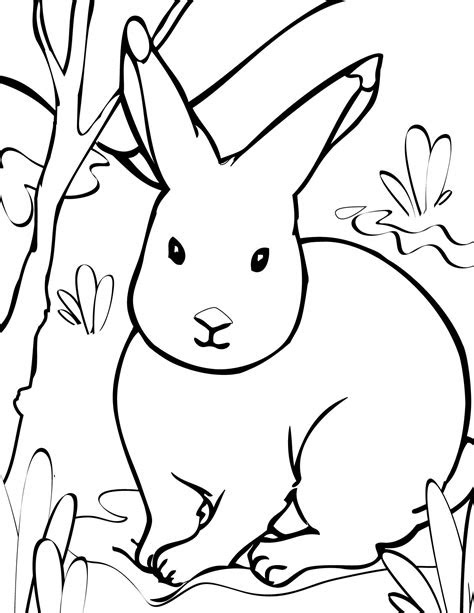 arctic animals coloring pages handipoints animal coloring