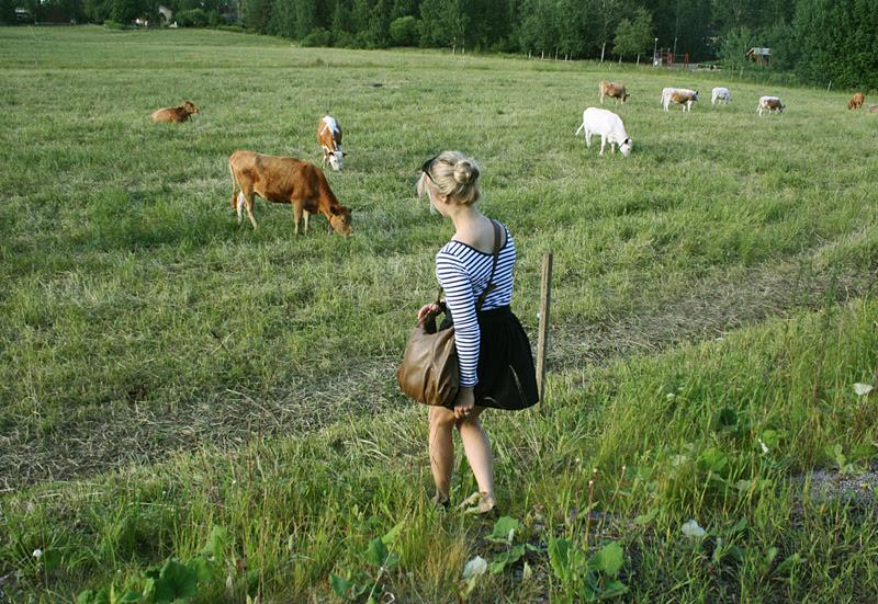 lehmätt