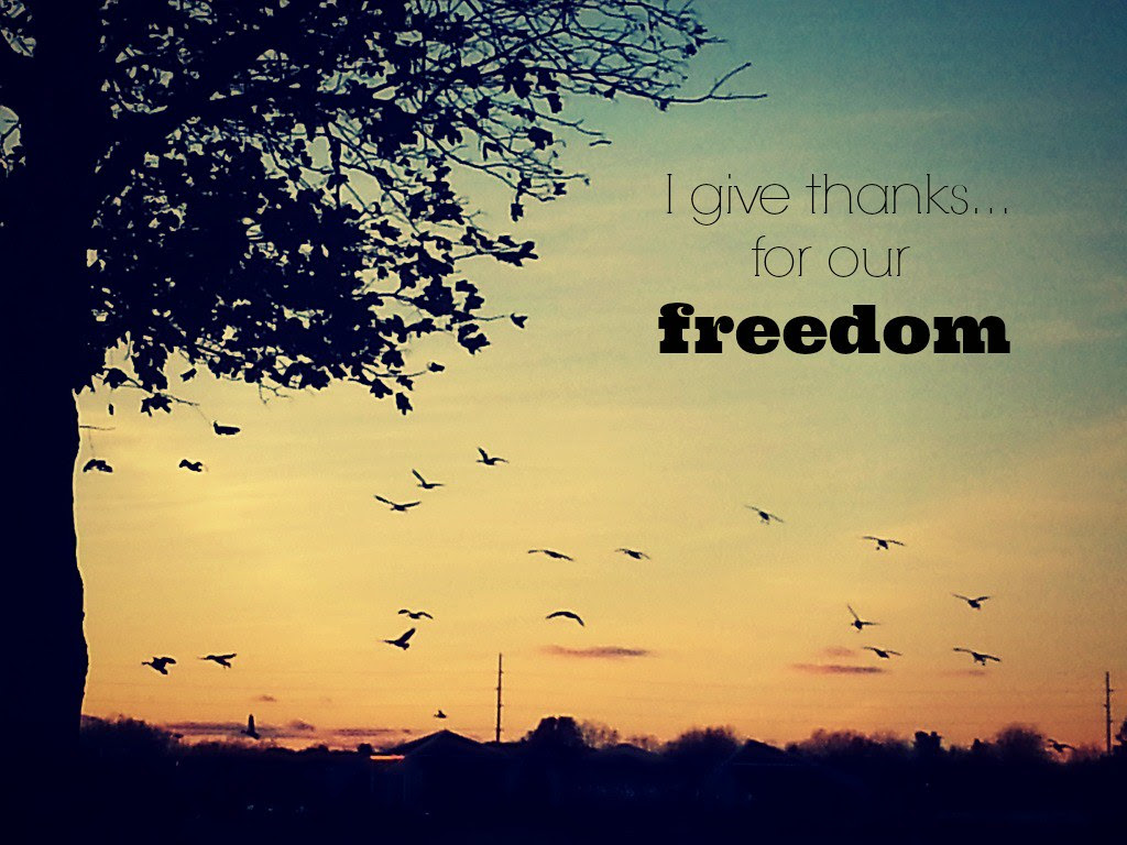 {gratitude} day 11...our freedom