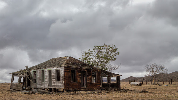 Abandoned farmstead, Carrizo Plain National Monument