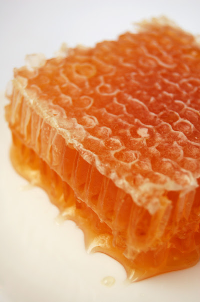Leatherwood Honey Comb