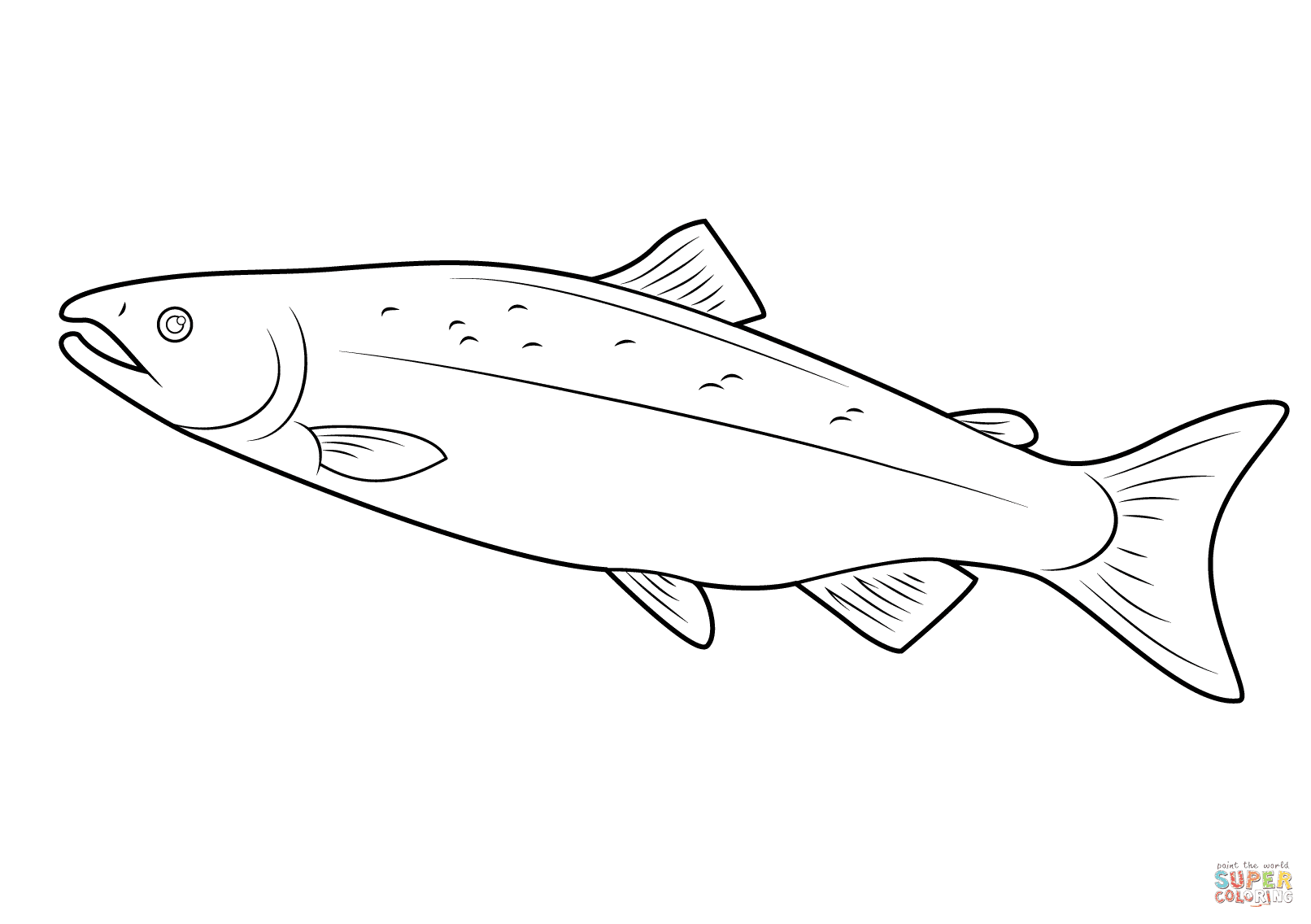 Salmon coloring page | Free Printable Coloring Pages