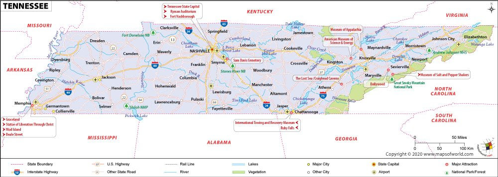 Knoxville Tree Services: Local Removal, Trimming, Grinding ...  |Chattanooga Time Zones