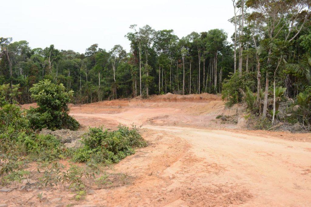 Dnit realiza obras para tornar trecho da BR-319 trafegável sem licença. Foto: Vandré Fonseca.