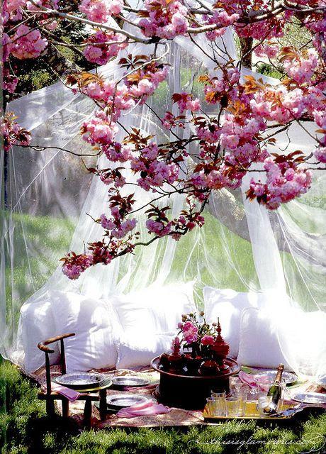 spring picnic romantic tulle
