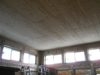 House Ceiling Facing Southwest