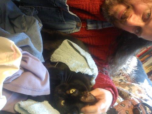 IOD: With kitties!
