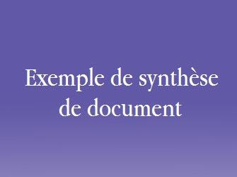Synthese De Document Exemple D Introduction - Exemple de ...