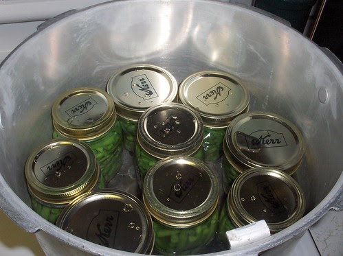 All the jars in the canner