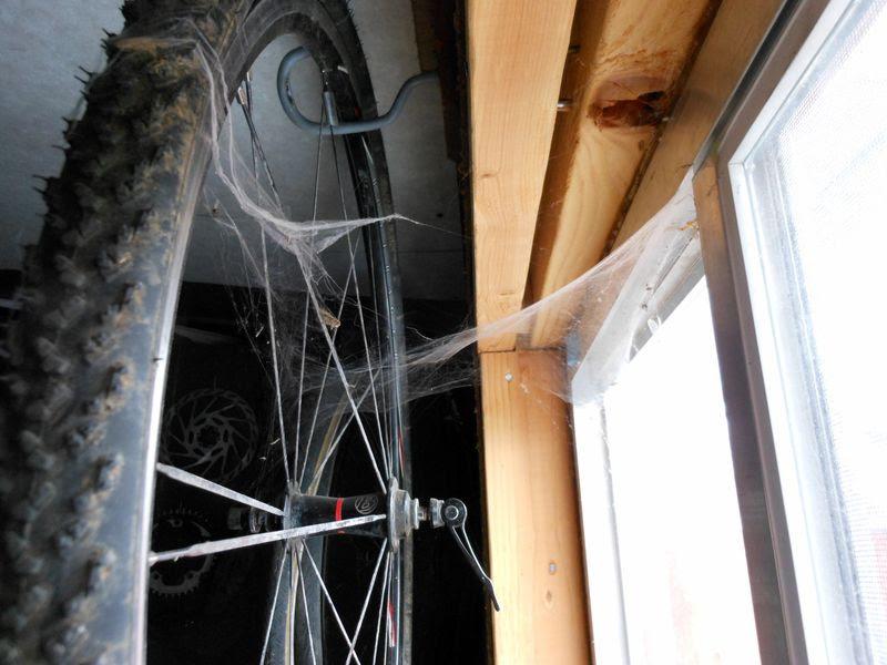 'cross webs