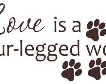 Quotes About Pet Adoption 26 Quotes