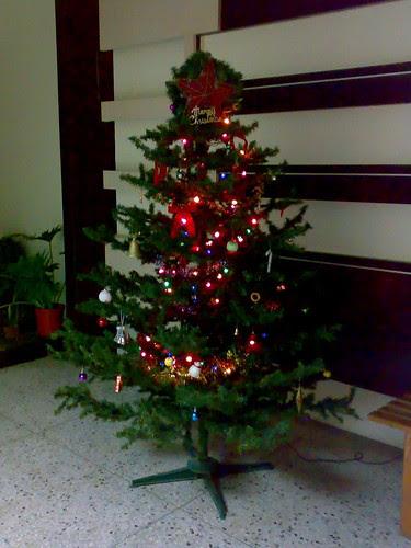 溫暖的聖誕樹