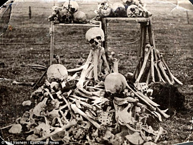 Dark history: This pile of bones was discovered in the Ukrainian town of Belzec, around 10 miles away from the site of four mass graves in Rava Ruska