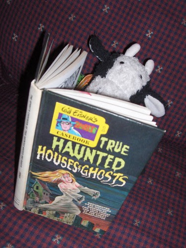 Reading scary ghost stories just before I go to bed