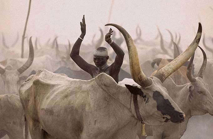 dinka-people-southern-sudan-angela-fisher-carol-beckwith-9