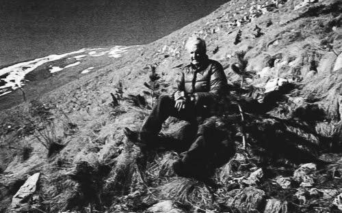 Girardelli sulla montagna, felice tra i suoi cirmoli