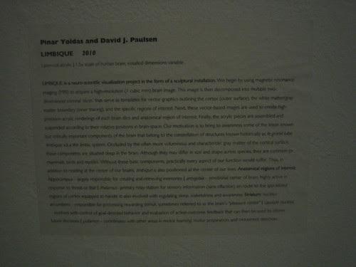 Limbique, 2010 - Pinar Yoldas and David J. Paulsen, October 2010, Worth Ryder Gallery, UC Berkeley 8898