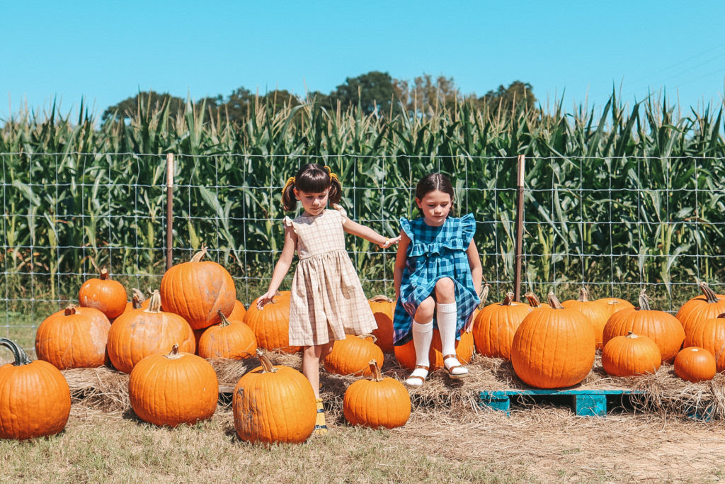 A Quick Guide to a Great Pumpkin Patch Visit: 5 Tips