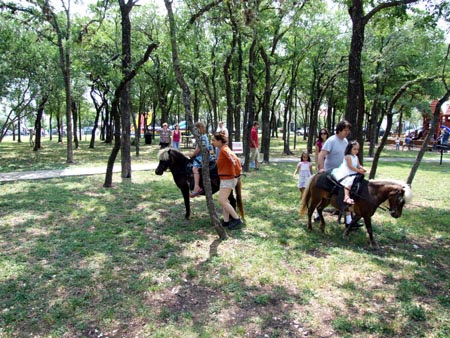 Horse Rides!