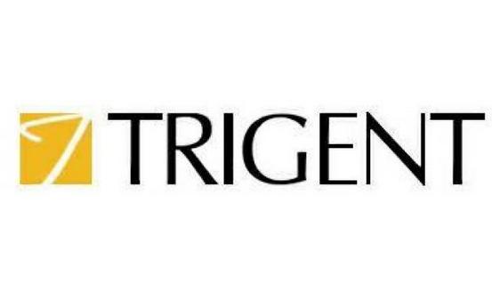 Image result for Trigent Software