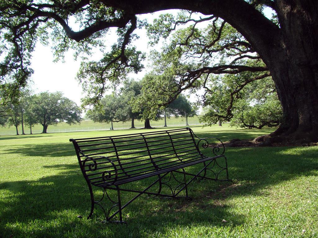 20100506_0737 Oak Alley plantation bench