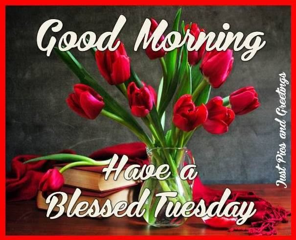 Pretty Good Morning Tuesday Blessings Quote Pictures Photos And