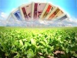 Relatório da MP que renegocia dívidas rurais é aprovado em comissão