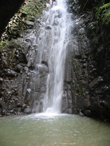 Resultado de imagen para chivato cajabamba