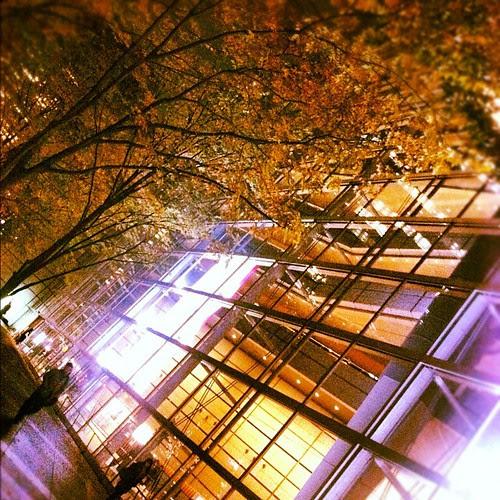 Interior and exterior autumn colors.